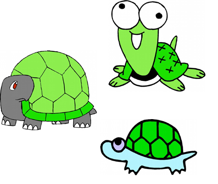 turtle embroidery designs