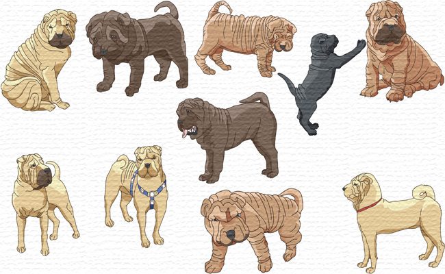 Shar Pei Dogs embroidery designs