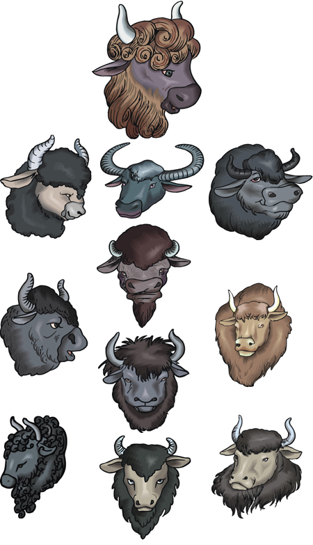 buffalo embroidery designs